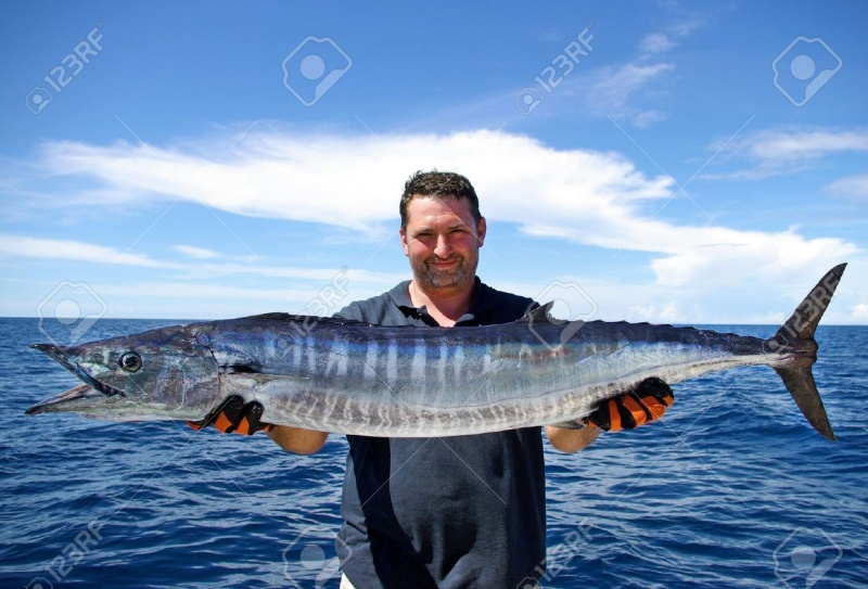 Name:  15972279-happy-fisherman-holding-a-beautiful-wahoo-fish.jpg