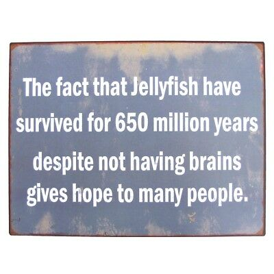 Name:  Funny-Jellyfish-Brains-Metal-Sign-Novelty-Coastal-Home.jpg