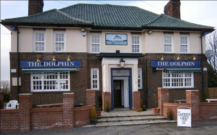 Name:  Dolphin.jpg Views: 103 Size:  149.1 KB