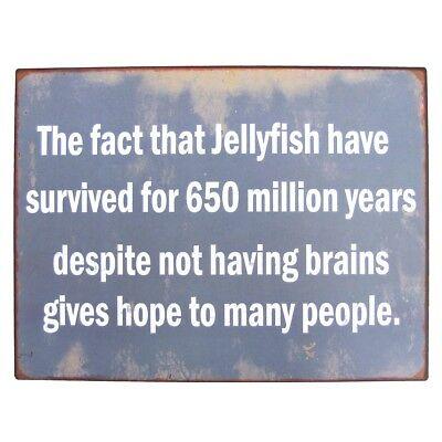 Name:  Funny-Jellyfish-Brains-Metal-Sign-Novelty-Coastal-Home.jpg Views: 40 Size:  24.0 KB
