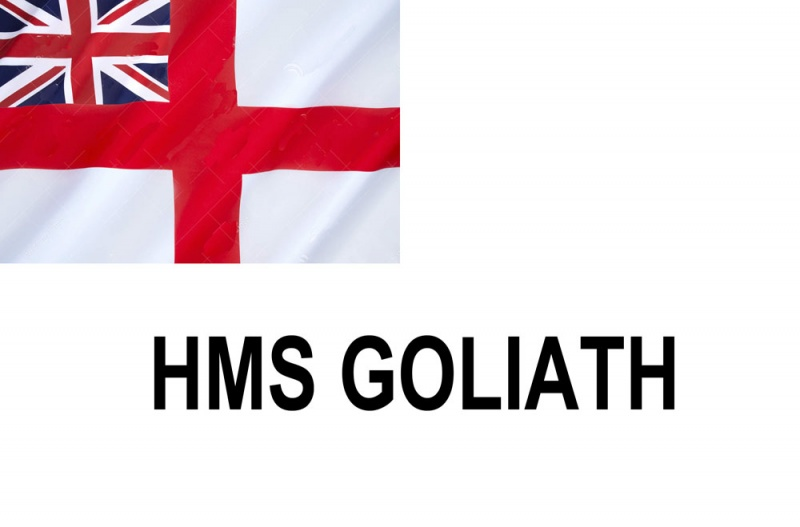 Name:  GOLIATH.jpg Views: 472 Size:  59.0 KB