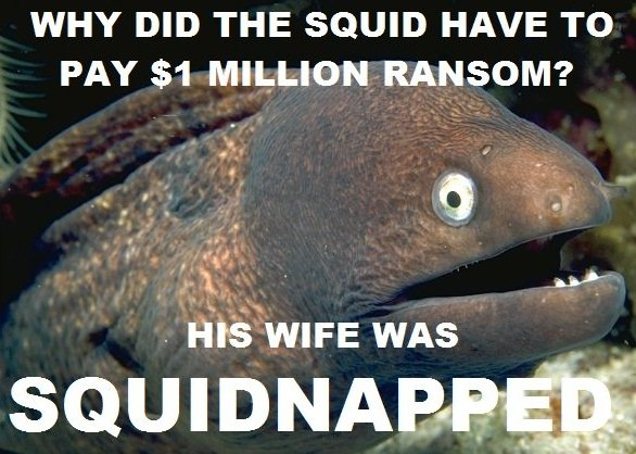 Name:  bad-joke-eel-squid.jpg Views: 78 Size:  64.3 KB