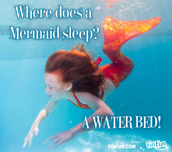 Name:  mermaid-jokes-waterbed1.jpg