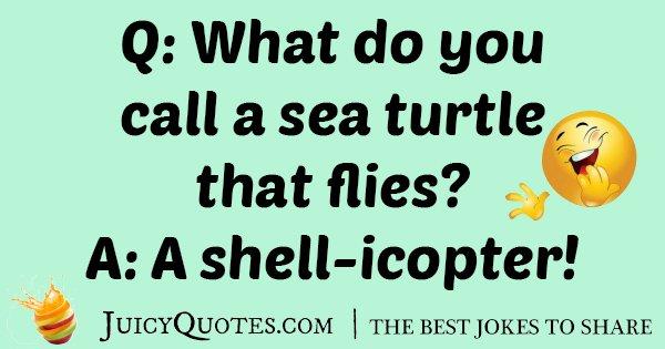 Name:  Turtle-Jokes-25.jpg Views: 98 Size:  41.6 KB
