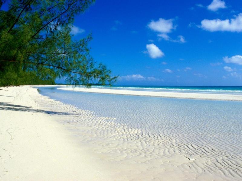 Name:  bahamas-white-sand.jpg Views: 141 Size:  195.4 KB