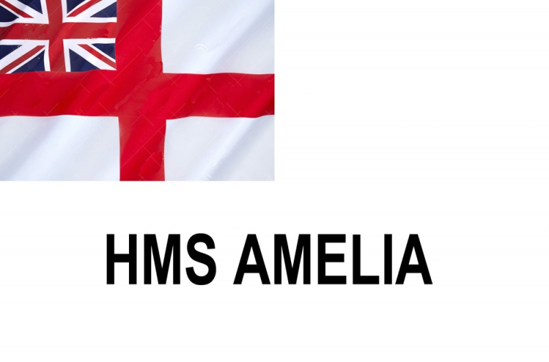 Name:  AMELIA.jpg Views: 452 Size:  57.7 KB