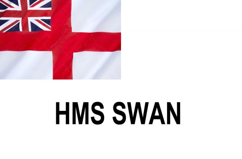 Name:  SWAN.jpg Views: 447 Size:  58.1 KB