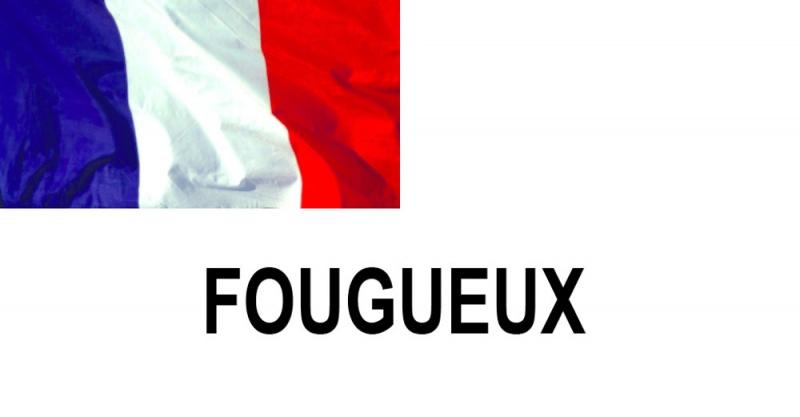 Name:  FOUGUEUX.jpg Views: 450 Size:  45.2 KB