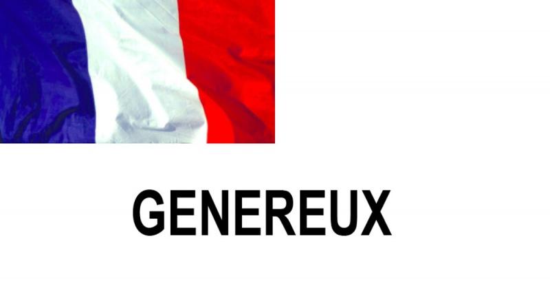 Name:  GENERAUX.jpg Views: 443 Size:  45.0 KB