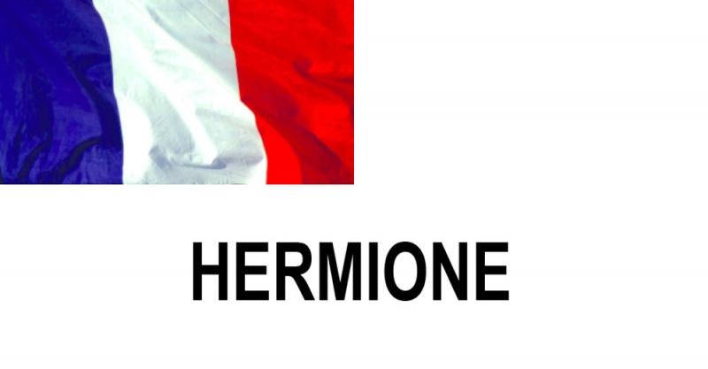 Name:  HERMIONE.jpg Views: 446 Size:  44.3 KB
