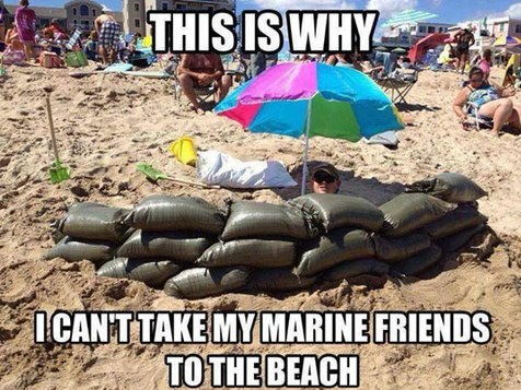 Name:  funny-picture-marine-friends-beach.jpg