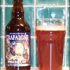 Name:  freeminer-brewery-trafalgar-ipa-beers-photo-1.jpg Views: 73 Size:  18.8 KB
