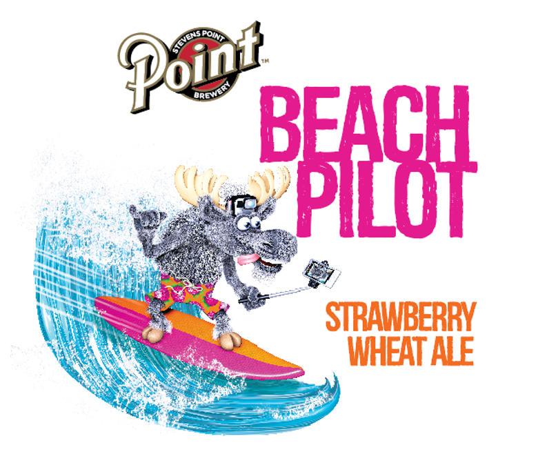 Name:  beach_pilot_1.jpg Views: 71 Size:  98.3 KB