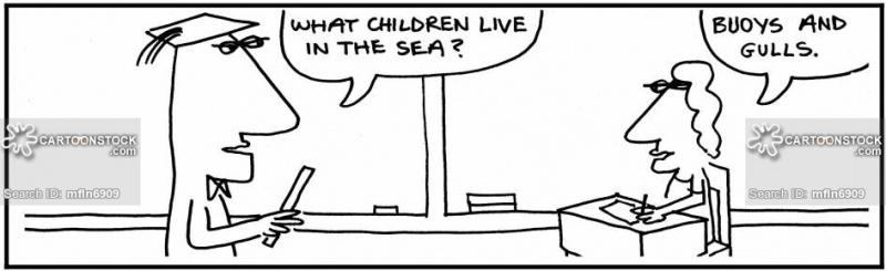 Name:  children-pun-gull-buoy-joke-joker-mfln6909_low.jpg Views: 40 Size:  64.9 KB