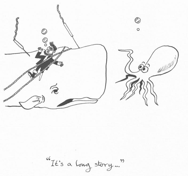 Name:  Moby-Dick-001.jpg Views: 43 Size:  99.5 KB