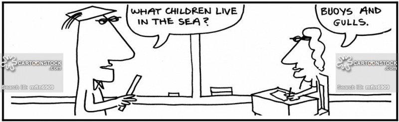 Name:  children-pun-gull-buoy-joke-joker-mfln6909_low.jpg Views: 45 Size:  64.9 KB