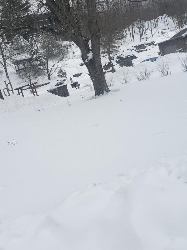 Name:  Snowstorm 2.jpg Views: 11 Size:  123.0 KB