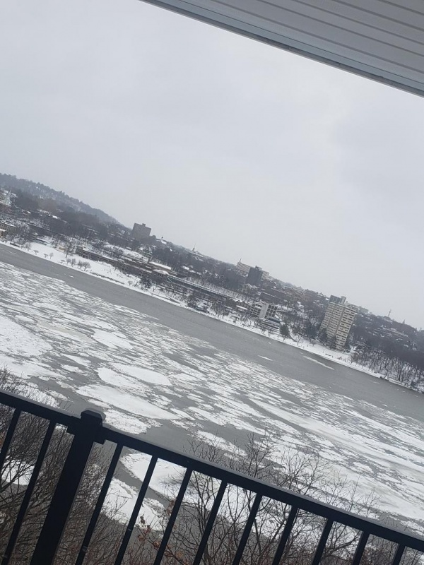 Name:  Snowstorm 1.jpg Views: 11 Size:  174.2 KB