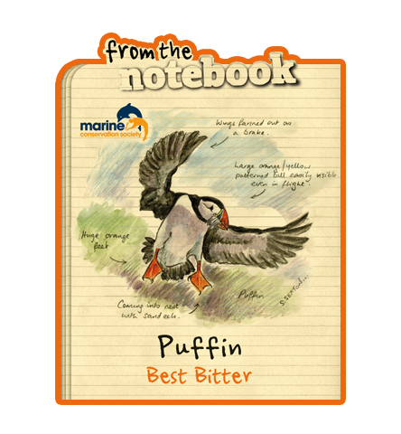 Name:  puffin_600x600.png