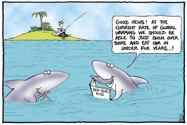 Name:  shark-global-warming.jpg Views: 83 Size:  52.0 KB