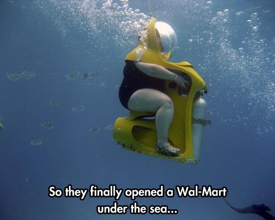Name:  funny-fat-woman-ocean-diving.jpg Views: 76 Size:  34.8 KB