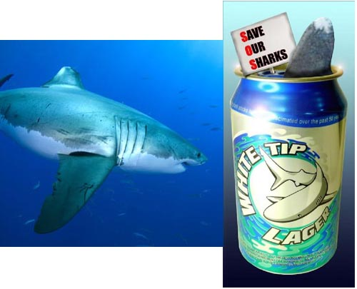 Name:  SharkBrew.jpg