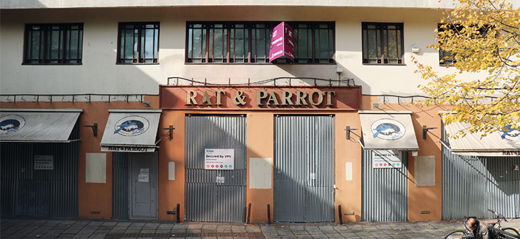Name:  rat-and-parrot-760x350.jpg Views: 132 Size:  141.2 KB