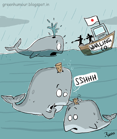 Name:  pale+whale+tale.jpg Views: 303 Size:  100.9 KB