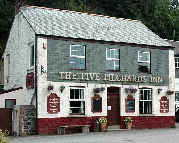 Name:  5thefive_pilchards_2.jpg