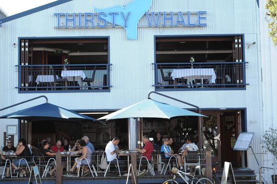 Name:  thirsty-whale.jpg Views: 191 Size:  56.5 KB