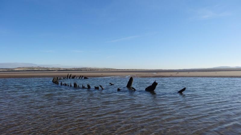 Name:  (20130302) - Aberlady Bay To Gullane Sands - 016.jpg Views: 116 Size:  101.8 KB