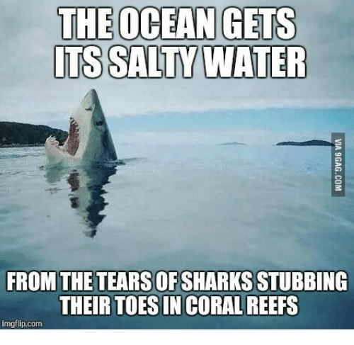 Name:  the-ocean-gets-its-salty-water-from-the-tears-of-14040217.png Views: 35 Size:  134.1 KB