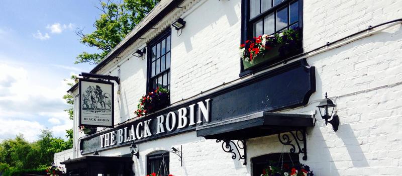 Name:  Black_Robin_big.jpg Views: 45 Size:  267.5 KB