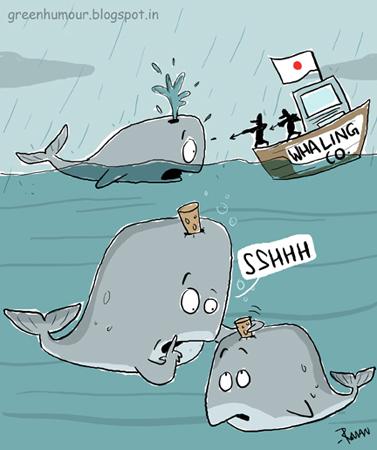 Name:  pale+whale+tale.jpg Views: 197 Size:  100.9 KB