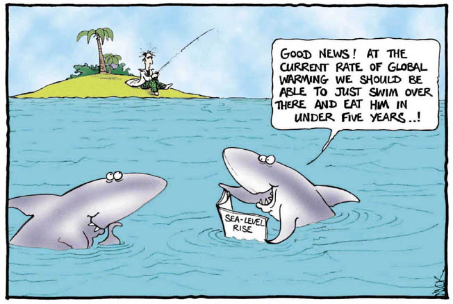 Name:  shark-global-warming.jpg Views: 46 Size:  52.0 KB