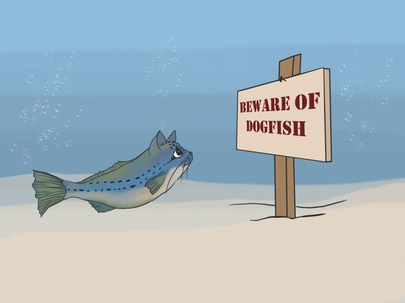 Name:  beware-of-dogfish.jpg Views: 54 Size:  62.1 KB
