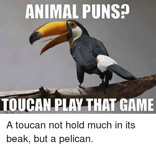Name:  animal-puns-toucan-play-that-game-a-toucan-not-hold-31935065.png Views: 78 Size:  96.1 KB