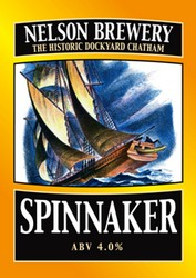 Name:  Spinanakerlge.jpg