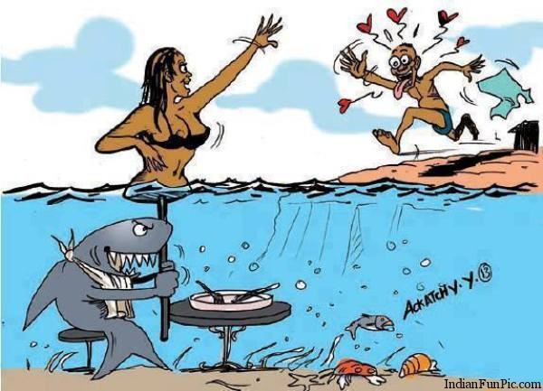 Name:  best-latest-funny-and-most-humor-pictures-2013-clever-shark-to-eat-man-in-sea.jpg