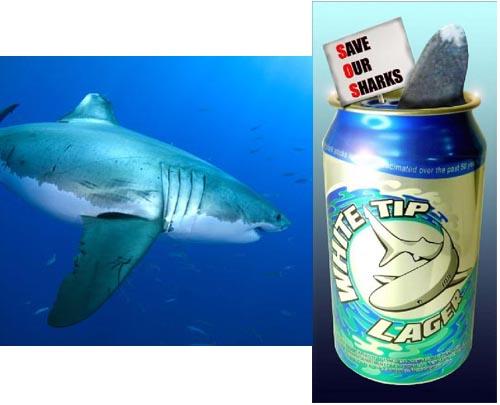 Name:  SharkBrew.jpg Views: 25 Size:  34.2 KB