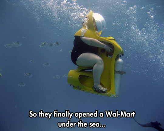 Name:  funny-fat-woman-ocean-diving.jpg