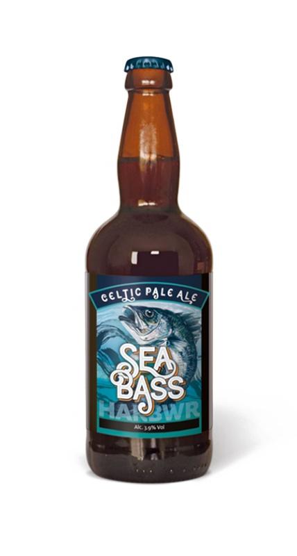 Name:  sea-bass-nov19-harbwr-btl-A.jpg Views: 16 Size:  47.6 KB