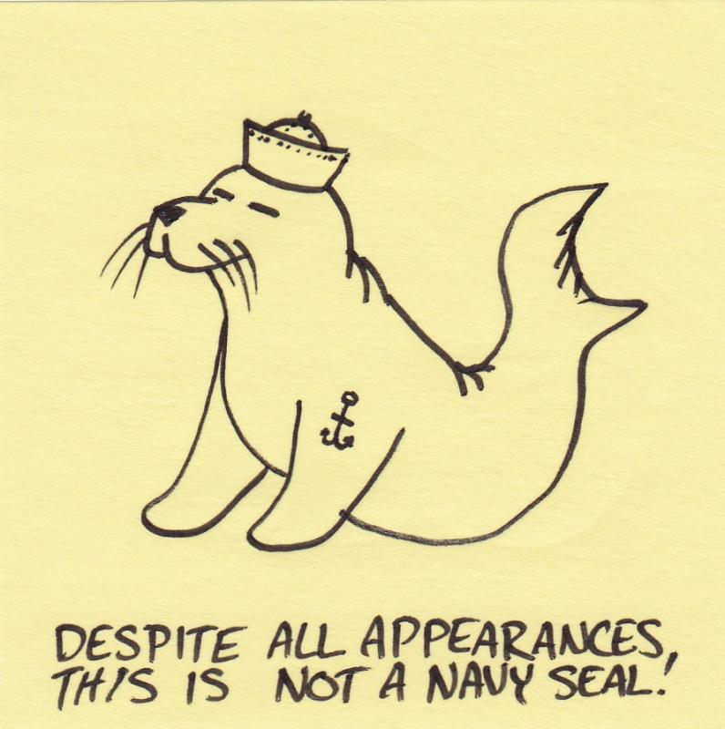 Name:  not-a-navy-seal.jpg Views: 68 Size:  170.8 KB