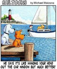 Name:  2564ca95148d8f1f64cea13b8ace528f--i-love-dogs-sailing.jpg Views: 60 Size:  21.7 KB
